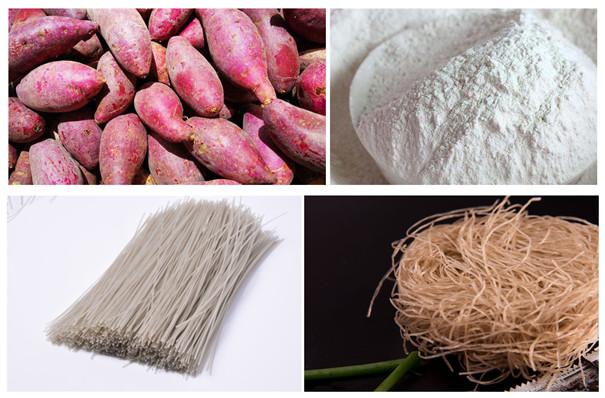 红薯粉条加工